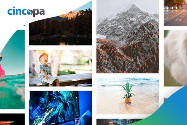 Jak obohatit vlastní obsah e-shopu o moderní foto a video galerie? Řešením může být Cincopa.